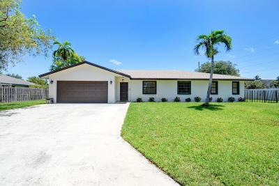 Boynton Beach Single Family Home For Sale: 9698 Vixen Circle
