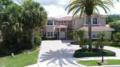Boca Raton Single Family Home For Sale: 9773 Parkview Avenue