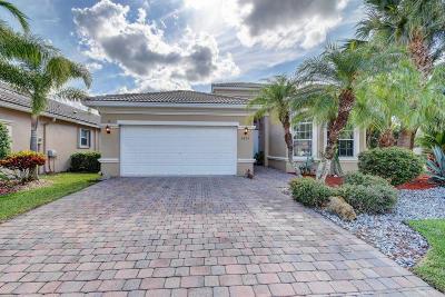 Bellaggio Single Family Home For Sale: 6425 Via Primo Street