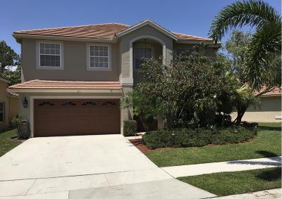 Jupiter Single Family Home For Sale: 151 Pennock Trace Drive