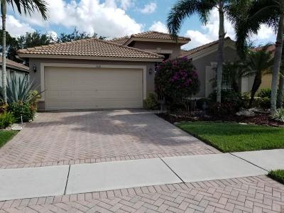 Boynton Beach Single Family Home For Sale: 5142 Palazzo Place