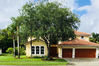 Lake Worth Single Family Home For Sale: 4427 Danielson Drive