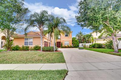 Lake Worth Single Family Home For Sale: 5727 La Gorce Circle