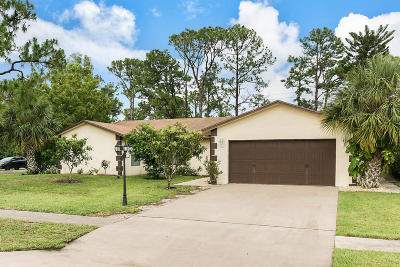 Lake Worth Single Family Home For Sale: 5122 Ouachita Drive