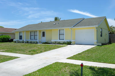 Boynton Beach Single Family Home For Sale: 8425 Elaine Drive
