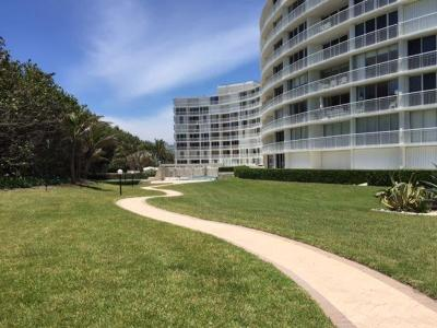 Palm Beach Condo For Sale: 2780 S Ocean Boulevard #808