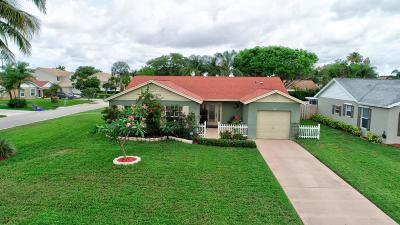 Boynton Beach Single Family Home For Sale: 9806 Goldenrod Drive