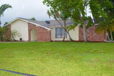 Port Saint Lucie Single Family Home For Sale: 2498 SE Pinero Road
