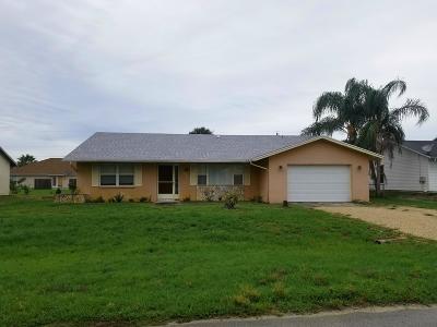 Port Saint Lucie Single Family Home For Sale: 973 SW Sultan Drive