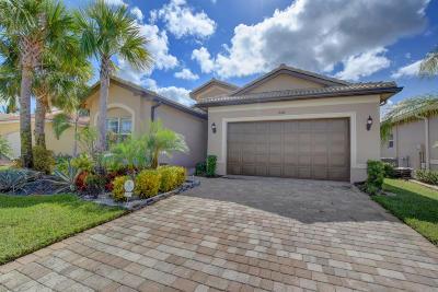Boynton Beach Single Family Home For Sale: 8168 Pikes Peak Avenue