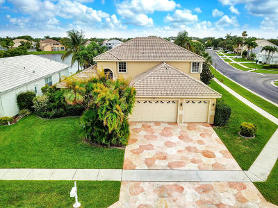 Lake Worth Single Family Home For Sale: 6201 Floridian Circle
