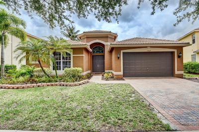 Boca Raton Single Family Home For Sale: 19525 Estuary Drive