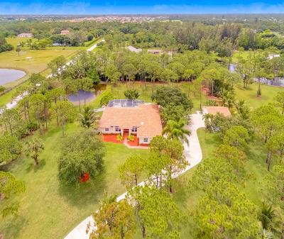 Palm Beach Gardens Single Family Home For Sale: 11276 83rd Lane