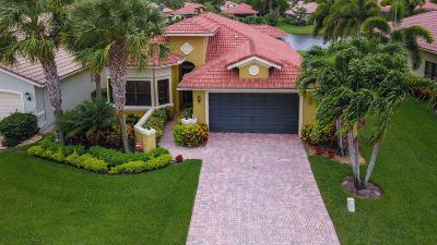 Boynton Beach Single Family Home For Sale: 6902 Boscanni Drive