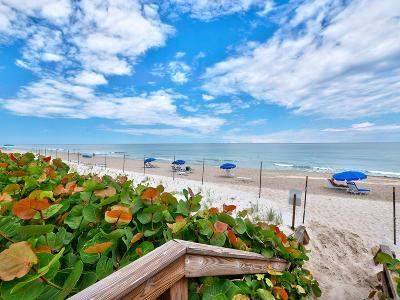 Cote D Azur Rental For Rent: 4200 Ocean Drive #2-306