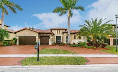 Broward County, Palm Beach County Single Family Home For Sale: 12135 NW 71 Street