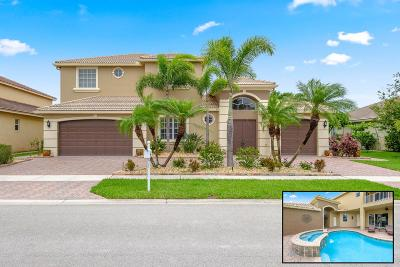 Lake Worth Single Family Home For Sale: 7371 Denicola Lane