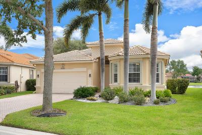 Boynton Beach Single Family Home For Sale: 7851 Lando Avenue