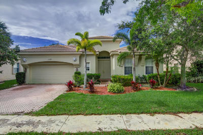 Royal Palm Beach Single Family Home For Sale: 1727 Annandale Circle