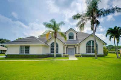 Palm Beach Gardens FL Single Family Home For Sale: $1,095,000