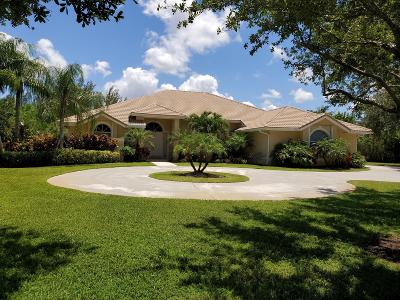 Palm Beach Gardens Single Family Home For Sale: 8203 Forego Road