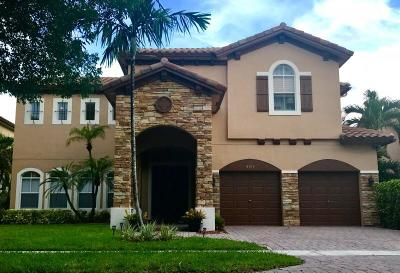 Boynton Beach Single Family Home For Sale: 4151 Artesa Drive