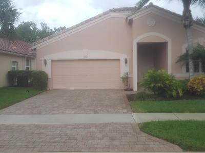 Bellaggio Single Family Home For Sale: 6564 Turchino Drive