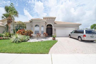 Boynton Beach Single Family Home For Sale: 6515 Southport Drive