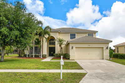Lake Worth Single Family Home For Sale: 9313 Olmstead Drive