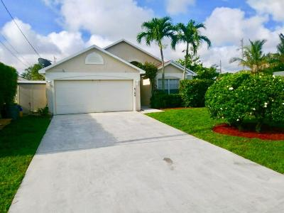 Jupiter Single Family Home For Sale: 6166 SW Lauderdale Street