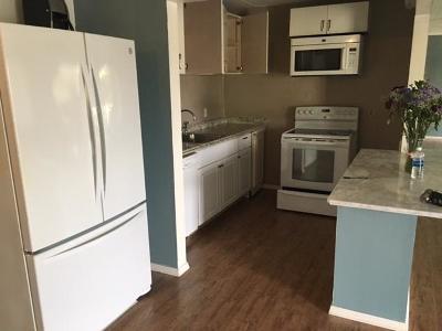 Palm Springs Condo For Sale: 3500 Springdale Boulevard #214