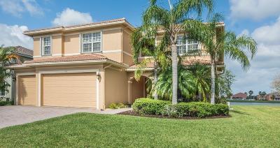 Vero Beach Single Family Home For Sale: 1035 Amethyst Drive SW
