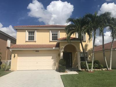 Wellington Single Family Home For Sale: 3632 Miramontes Circle