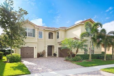 Wellington Single Family Home For Sale: 3418 Vanderbilt Drive
