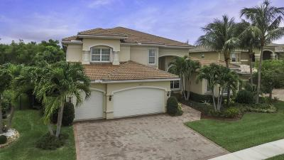 Boynton Beach Single Family Home For Sale: 8679 Daystar Ridge Point