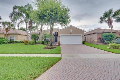 Boynton Beach Single Family Home For Sale: 8240 Grand Messina Circle