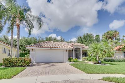 Boynton Beach Single Family Home For Sale: 6646 Jog Palm Drive