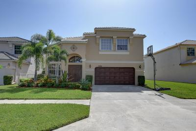 Lake Worth, Lakeworth Single Family Home For Sale: 6260 Branchwood Drive