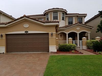 Wellington Single Family Home For Sale: 10460 Galleria Street