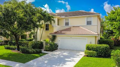 Lake Worth, Lakeworth Single Family Home For Sale: 6175 Shadow Tree Lane
