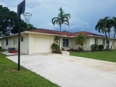 Boca Raton Single Family Home For Sale: 4666 Armadillo Street
