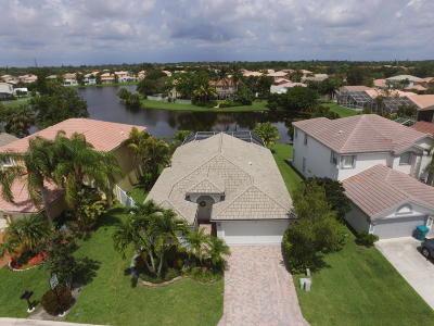 Boynton Beach Single Family Home For Sale: 7269 Chesapeake Circle