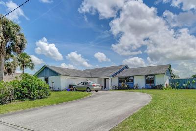 Port Saint Lucie Single Family Home For Sale: 1948 SW Aaron Lane