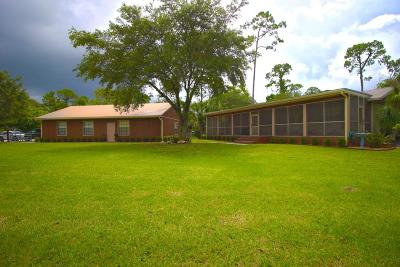 Loxahatchee Single Family Home For Sale: 16970 W Brighton Drive
