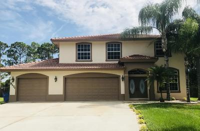 Port Saint Lucie Single Family Home For Sale: 3171 SW Collings Drive