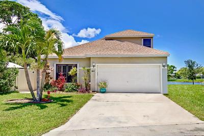 Boynton Beach Single Family Home For Sale: 64 Willow Circle