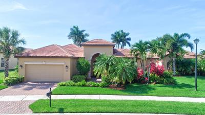 Port Saint Lucie FL Single Family Home For Sale: $399,900