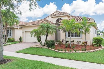 Port Saint Lucie Single Family Home For Sale: 308 NW Millpond Lane