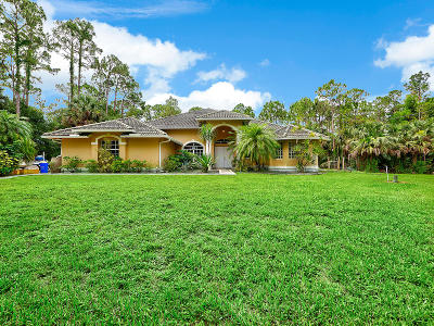 Jupiter Single Family Home For Sale: 10074 Sandy Run Road
