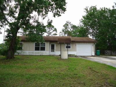 Port Saint Lucie Single Family Home For Sale: 3043 SW Vittorio Street